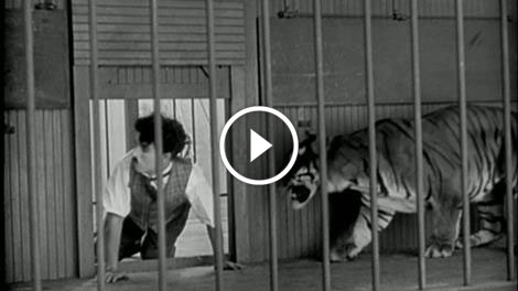 Charlie Chaplin in Lion's cage