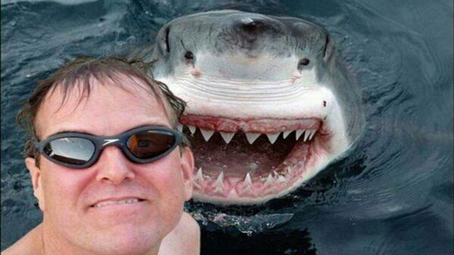 25 most dangerous selfies ever
