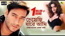 Cheyechi Jare Ami | Bengali Movie | Ajay Devgan, Ameesha Patel