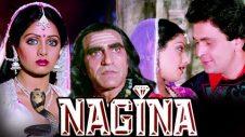 Nagina | Full Movie | Sridevi | Rishi Kapoor | Superhit Hindi Movie