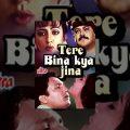 Tere Bina Kya Jeena Full Movie   Shekhar Suman   Moon Moon Sen   Superhit Hindi Movie