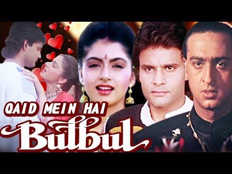 Qaid Mein Hai Bulbul Full Movie   Bhagyashree   Superhit Hindi Movie