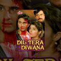 Dil Tera Diwana Full Movie | Saif Ali Khan Hindi Movie | Twinkle Khanna | Bollywood Movie
