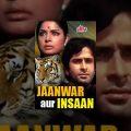 Jaanwar Aur Insaan Full Movie | Shashi Kapoor Hindi Movie | Rakhee Gulzar | Superhit Hindi Movie