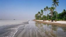 Beautiful Kuakata Sea Beach | Jhau-Bon |Travel Bangladesh কুয়াকাটা
