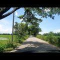 Beautiful Bangladesh Holiday Vlog | Palm Trees Village Food Fishing Travel