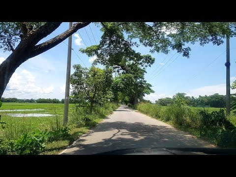 Beautiful Bangladesh Holiday Vlog   Palm Trees Village Food Fishing Travel