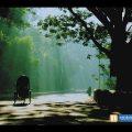 City Area, Chittagong, Bangladesh – বাংলা ভিডিও | NahidRains Pictures #Bangladesh #NahidRains