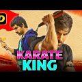 Karate King (2019) Telugu Hindi Dubbed Movie | Ravi Teja, Taapsee Pannu