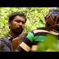 Crime Investigation Program Undercover Ep 41 News24 জলদস্যু্দের হিংশ্রতার আড়ালের গল্প