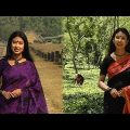 TRAVEL 'SHOMPUR VIHAR' & 'MALNICHHARA TEA GARDEN' IN BANGLADESH |  সোমপুর বিহার ও মালনীছড়া চা বাগান