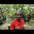 Ratargul Swamp Forest | Sylhet | Travel Bangladesh | Go Pro
