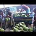 Fruit Market In Bangladesh | Travel Bangla 24 | Fresh Fruits Market