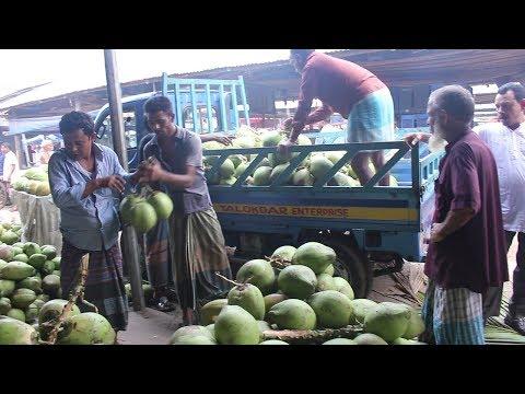 Fruit Market In Bangladesh | Travel Bangla 24 | Fresh Fruits Market