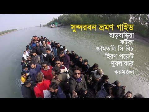 Sundarbans – The World's Largest Mangrove Forest in Bangladesh,Travel guide   সুন্দরবন ভ্রমণ গাইড