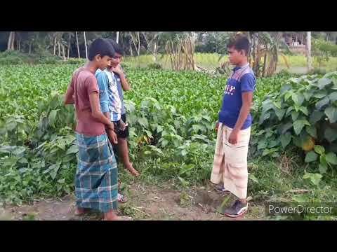 Bangla song Bangla বাংলা  গান SA VISION BD
