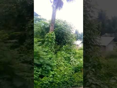 #sresthAking#entertainment(Bangladesh travel by bus)