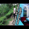 শ্রীমঙ্গলে আবাসিক হোটেল । Best Resorts in Sreemangal | Dhaka to Sreemangal