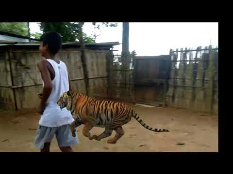 Bangla full movie trailer Joking best status