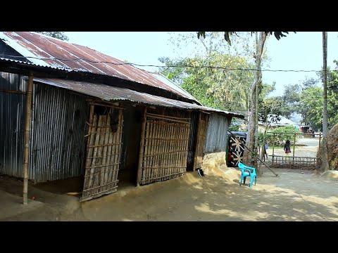 Daily Village Life । Natural Village life in Bangladesh